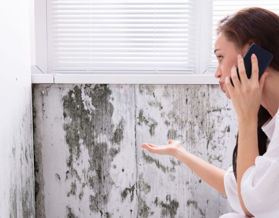 Side View Of A Young Woman Calling For Assistance On Cellphone Near Moldy Wall
